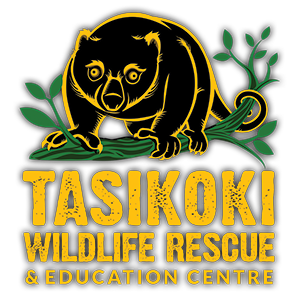 Tasikoki Wildlife Rescue Centre